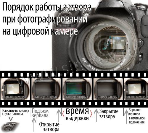 article32____1.jpg