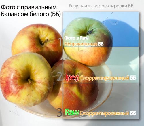 article29____11.jpg