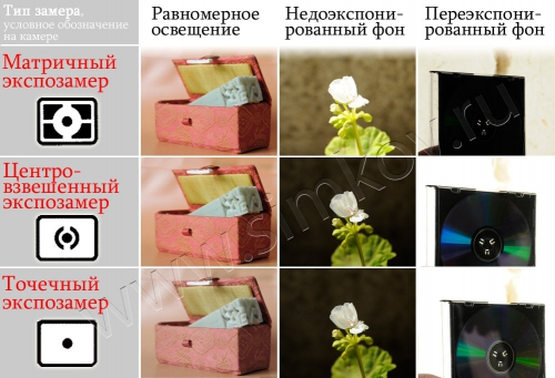 article36____4.jpg