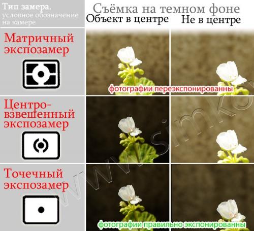 article36____6.jpg